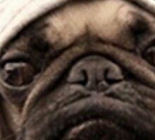 Pug Life Funny Sticker