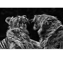 Brothers in Arms Photographic Print