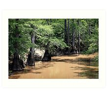 Black Cypress Creek Art Print