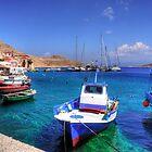 Chalki Fishing Boats by Tom Gomez