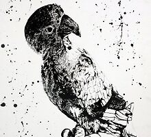 Parrot Drawing in Ink by Wulvez