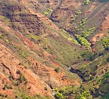 Waimea Canyon Abstract Two by Peter Sucy