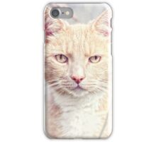Red Tomcat iPhone Case/Skin