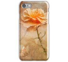 Lost Roses  iPhone Case/Skin