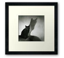 Portrait of black cat on sofa film noir chiaro scuro black and white square silver gelatin film analog photo Framed Print