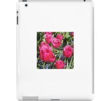 Smiling Tulips - Floral Collection (3) iPad Case/Skin