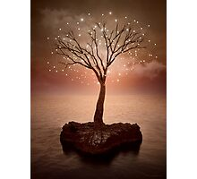 The Strong Grows In Solitude (Tree of Solitude) Photographic Print