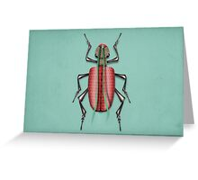 insect 1 Greeting Card