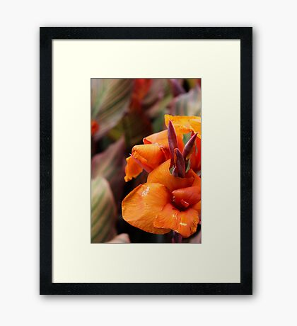 Bright Orange Flowery Day Framed Print