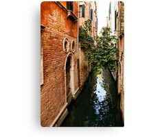 Impressions Of Venice - Small Canal Hugged by a Fig Tree Canvas Print