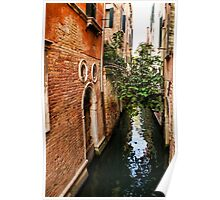 Impressions Of Venice - Small Canal Hugged by a Fig Tree Poster