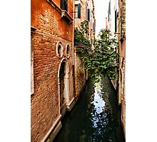 Impressions Of Venice - Small Canal Hugged by a Fig Tree Photographic Print