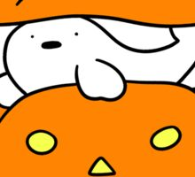 Pumpkin Harp Seal and Cat Sticker