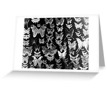 blackButterflies Greeting Card