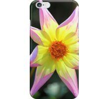 Autumn Bloom iPhone Case/Skin