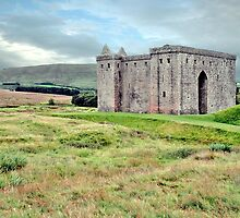 Hermitage Castle by Stuart  Fellowes