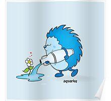 funny zodiac/aquarius Poster