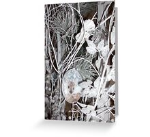 Woodland Christmas Greeting Card