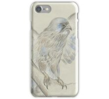 kestrel iPhone Case/Skin