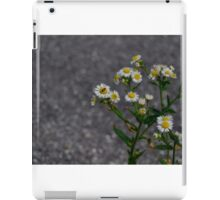 Lonely Bug iPad Case/Skin
