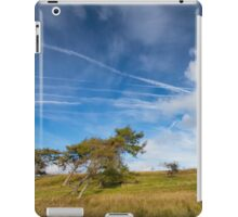 Beautiful sky & wind swept trees iPad Case/Skin