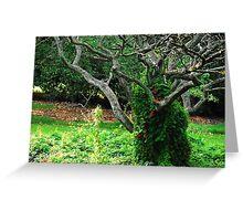 Royal Botanic Garden (Edinburgh)_3 Greeting Card