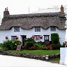 Little Tea Room at Coverack  by hootonles