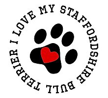 I Love My Staffordshire Bull Terrier Photographic Print