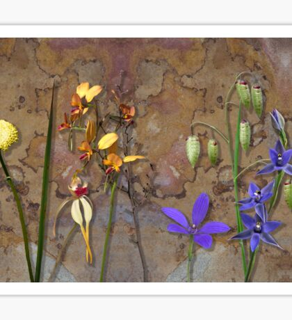 Orchids and Wildflowers on old rusty Pink n Caramel Metal Sticker