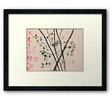 Japanese Bamboo  Framed Print