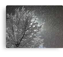 Snowy Night Lights Canvas Print