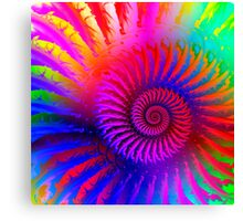 Psychedelic Fractal Art Canvas Print