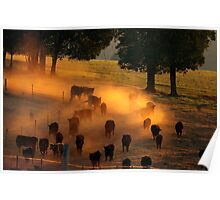 Waiting til the Cows come home Poster