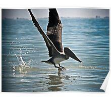 Pelican landing part deux Poster