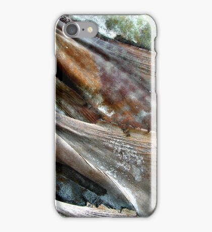 Storm Rider iPhone Case/Skin