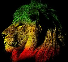 Jamaican Lion by WCPerryAndrez