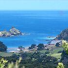 Harataonga.....Great Barrier Island, New Zealand......! by Roy  Massicks