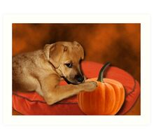 I CAN'T WAIT UNTIL MOM MAKES ME SOME PUMPKIN BISCUITS>>CANINE DOG PICTURE AND OR CARD Art Print