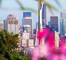 Space Needle Peeking View by Filly