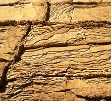 A Crack in the Ancient Rock by Sun Dog Alternative