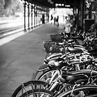 Castlemaine Railway Station by Sherene Clow