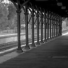 Down the Line by Sherene Clow