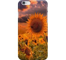 Sunflowers Field  iPhone Case/Skin