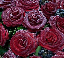 Frozen Roses by Mythos57