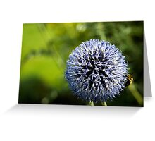 Purple thistle with bee Greeting Card