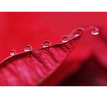more droplets Photographic Print