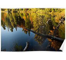 Mesmerizing Fall Reflections Poster