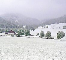 Snowing in Hinterthal by Graeme  Hyde