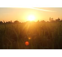 Sunset in Indian farm Photographic Print