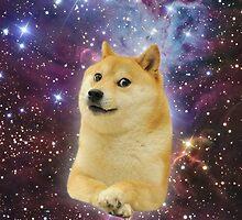 doge space skins by brandoncashroll